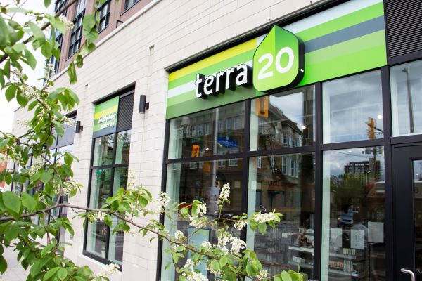 terra20 6 WWBIA 768x512