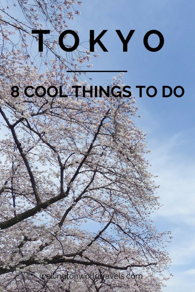 8 Cool Things You Have To Do in Tokyo - Wellington World Travels   Things to do and places to visit in Tokyo   Travel guide   Travel destination   travel bucket list ideas