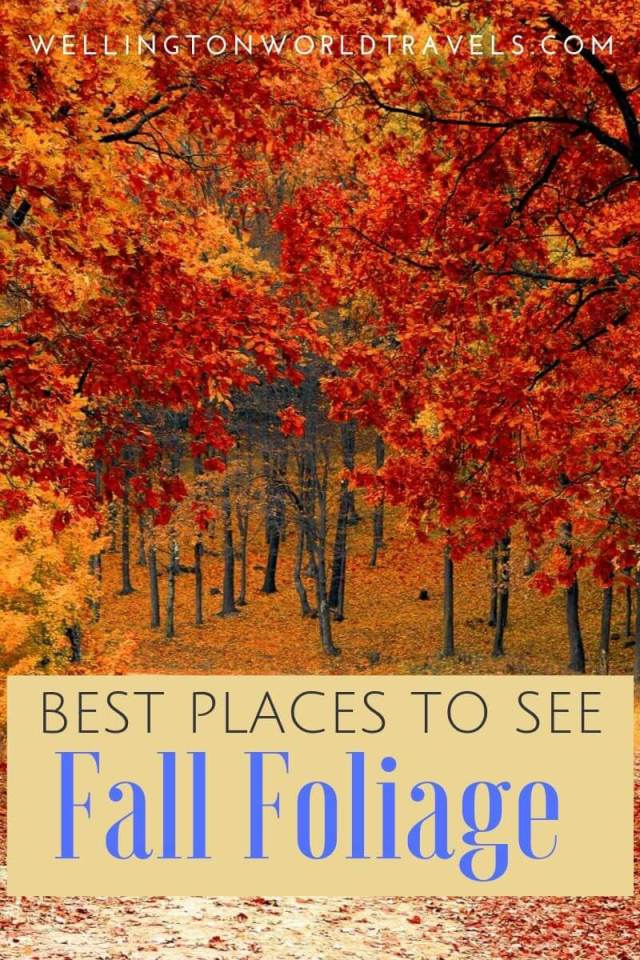 Best Places to See Fall Foliage in the USA - Wellington World Travels