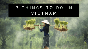 7 Things to do in Vietnam for the Ultimate Experience