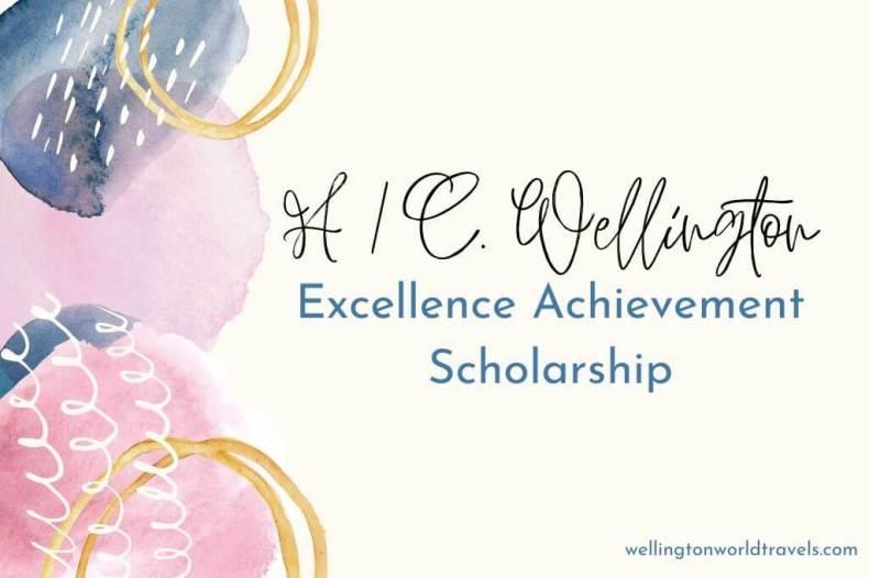 Pilot Scholarship
