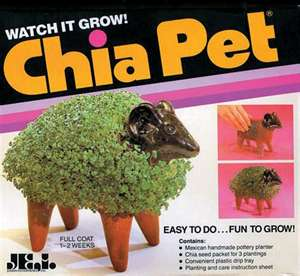 Chia Pet Planter