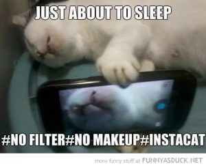 funny-cat-selfie-sleeping-instagram-pics