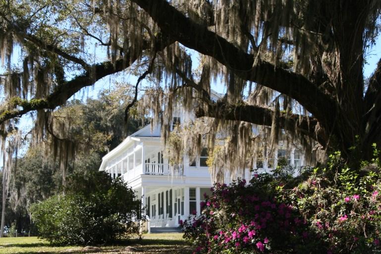 10 Hidden Gems in Central Florida | Wellness & Wanderlust