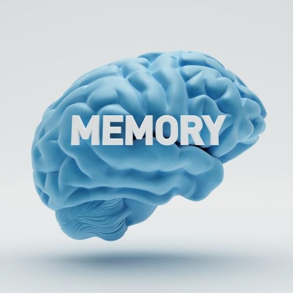 #memeory #Brain #power #health