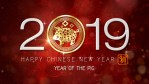 Happy Chinese New Year of the Pig 2019 Luck and What You Need to Know XO