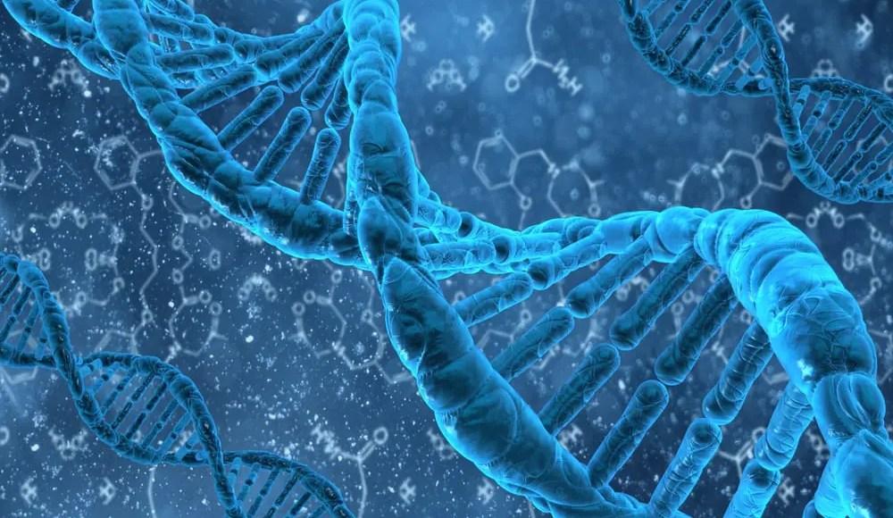 DNA Methylation Plasticity   El Paso, TX Chiropractor