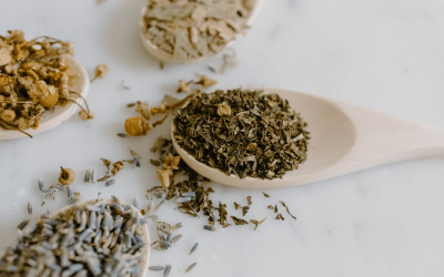 Masterclass – Using Herbs in Your Intuitive Practice | Zoom Event | 18/04/2021