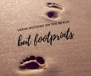 Leave nothing on the beach but footprints 1