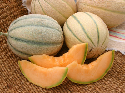Muskmelon or Kharbooza