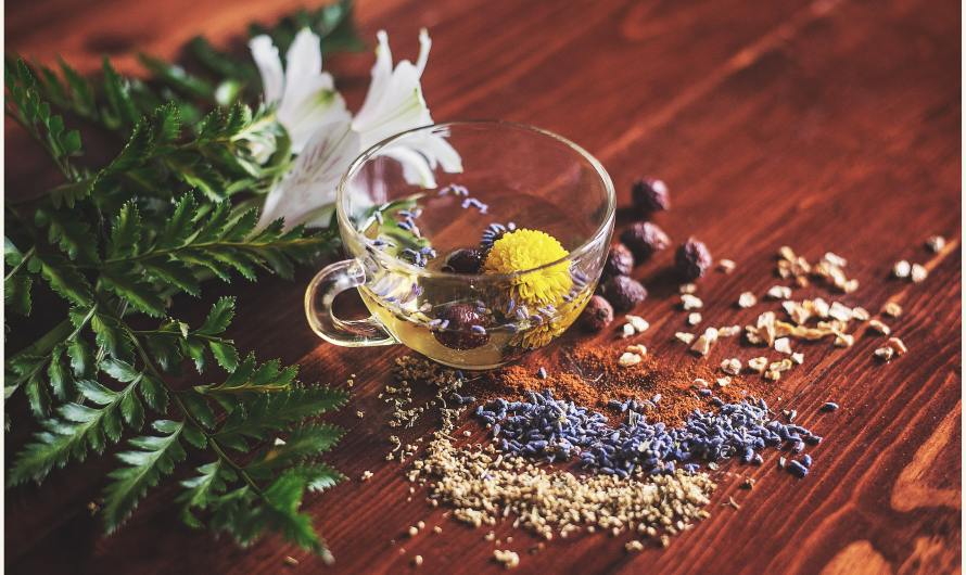 Herbs to Lose Belly Fat|Ayurveda Weight Loss