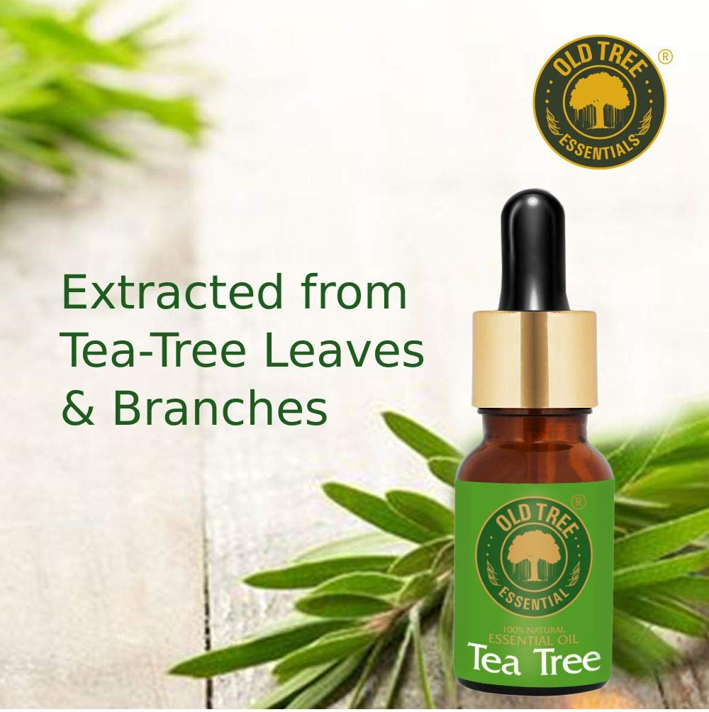 Old Tree Tea Tree Essential Oil