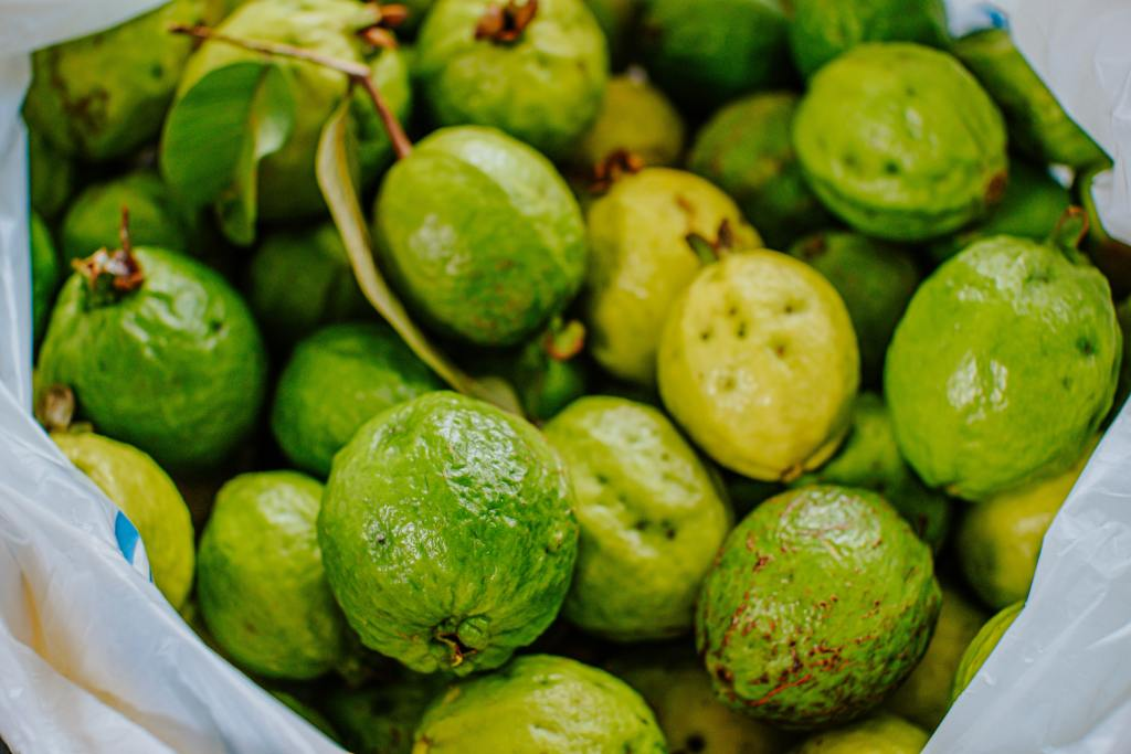 Guava-Highest Sources of Vitamin C