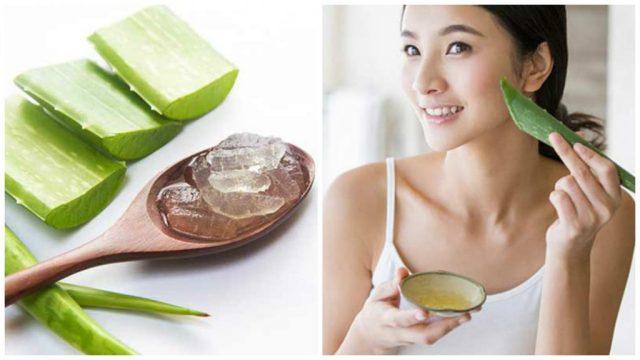Miracles of Aloe Vera on Skin