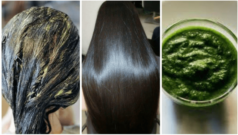 Grow Thick Hair Naturally with Betel Leaves Hair Pack
