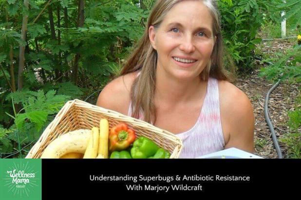 Understanding Superbugs & Antibiotic Resistance With Marjory Wildcraft