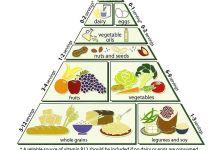 piramida na ishrana