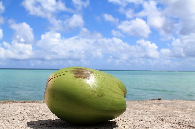 5 Basic Health Reasons To Drink Coconut Water Regularly