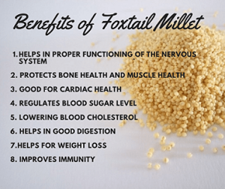 Health benefits of foxtail millet - immunity booster