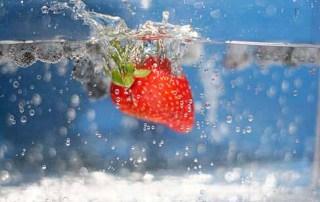 List of organic food