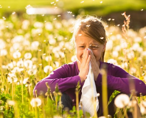 How to Prevent Allergies Without Drugs
