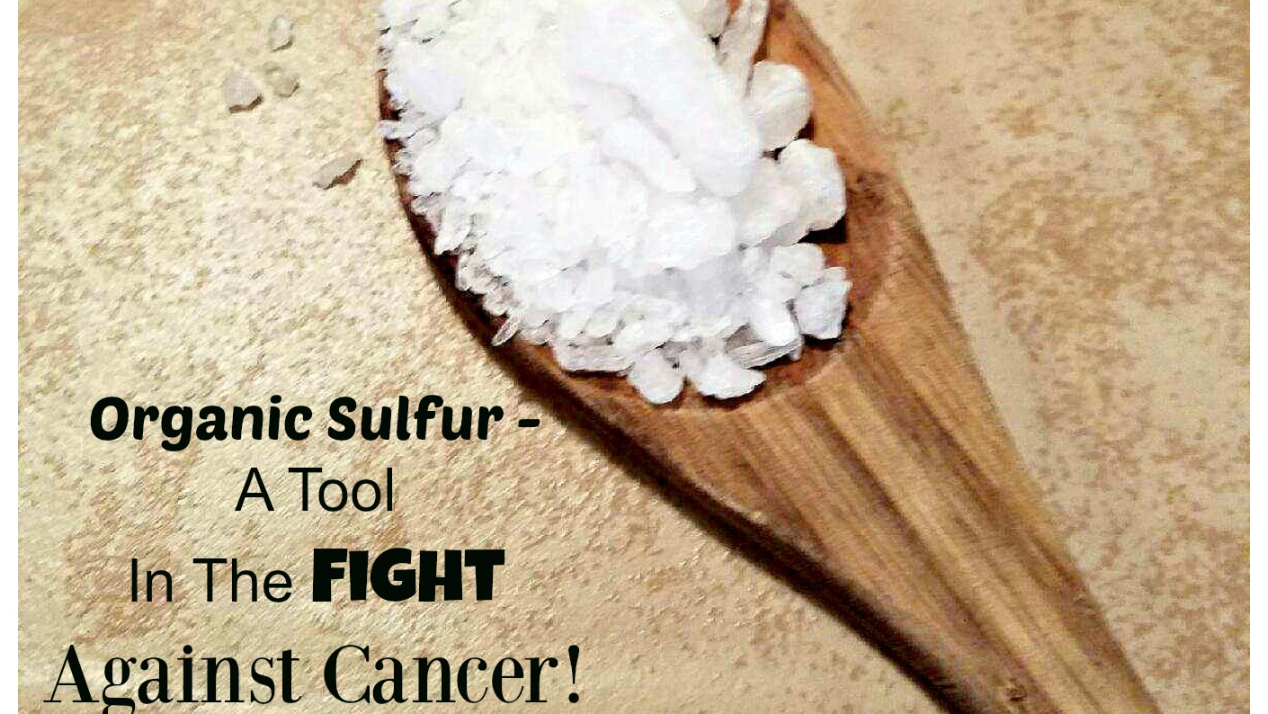 Organic Sulfur - A Tool In The Fight Against Cancer - Wellness Twins
