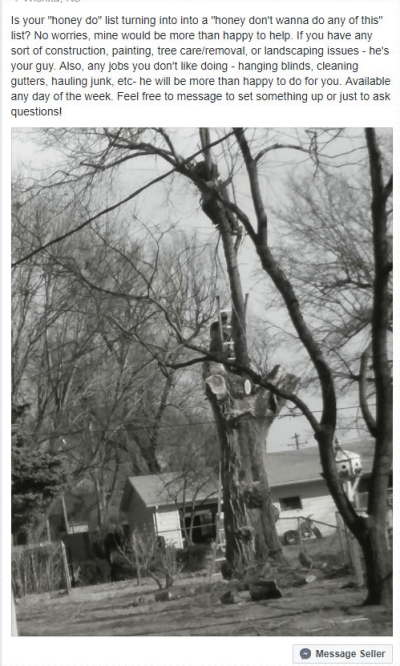 unsafe tree trimming safety