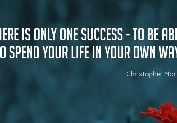 There is only one success