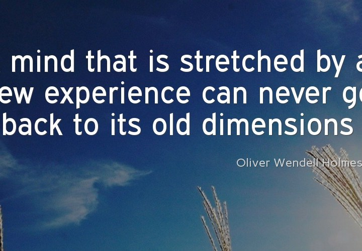 A mind that is stretched by a new experience