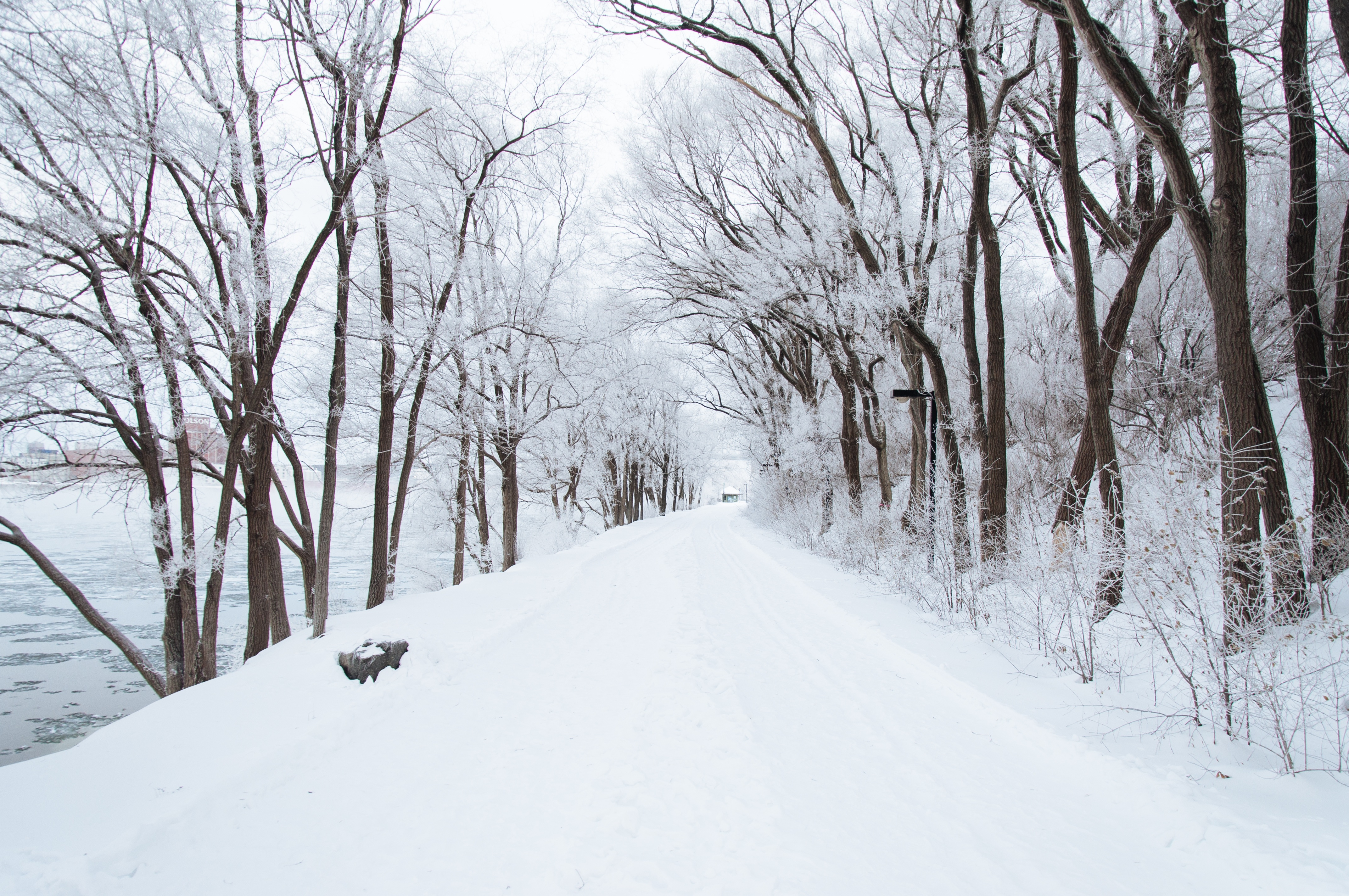 Surviving The Snow Without An Injured Back Well Of Life Center