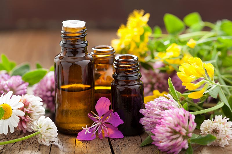 How Do We Use Essential Oils at The Well of Life Center?