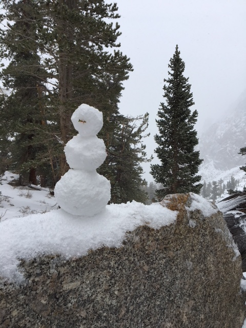 Frosty on Mt Whitney 052118