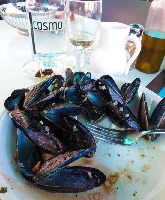 Mega mussels in Ville France sur Mer