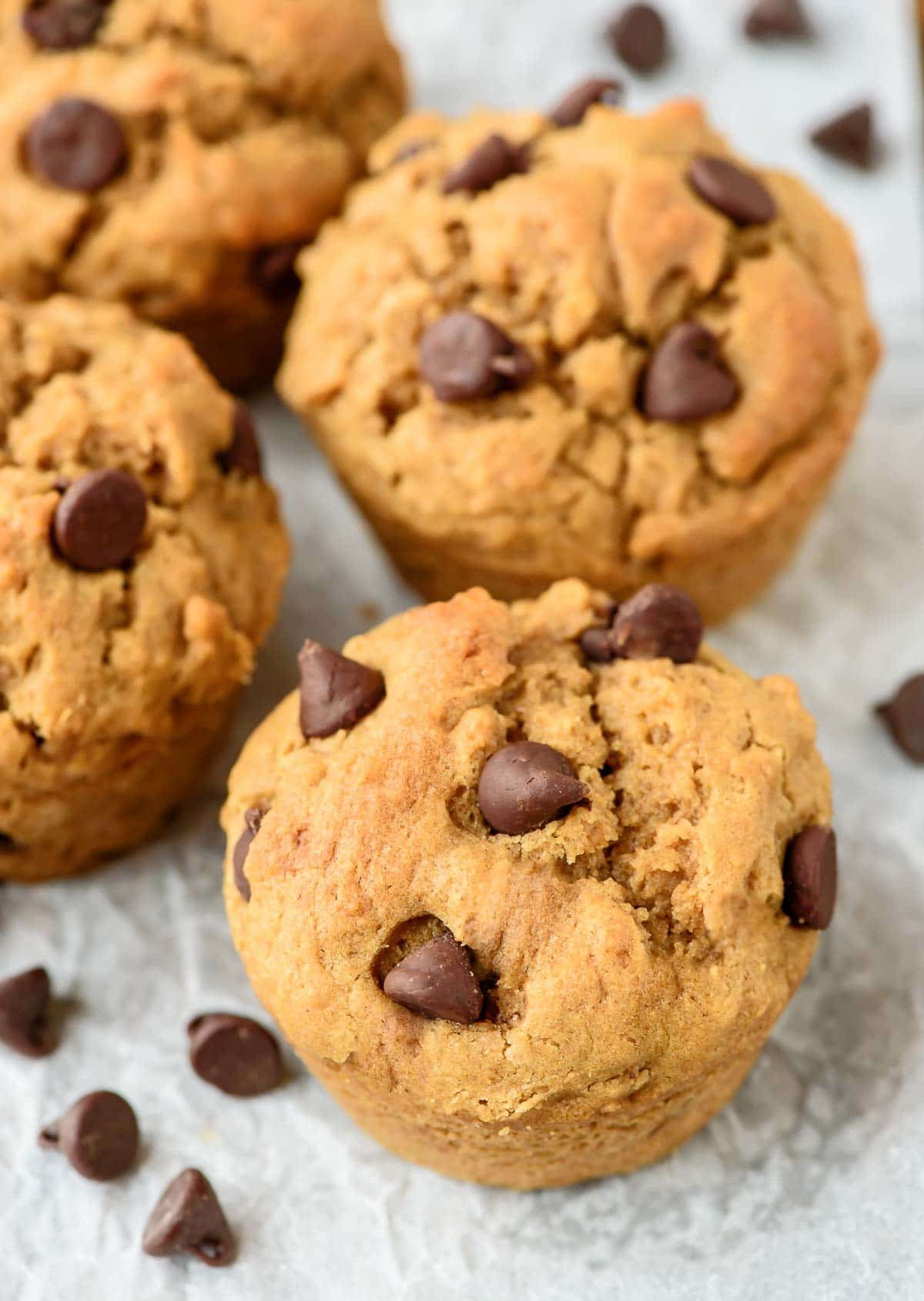 Chocolate Chip Peanut Butter Muffins. Fluffy, moist and PACKED with peanut butter!