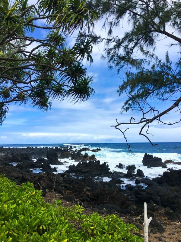 Stop on the Road to Hana, one of the best Maui activities!
