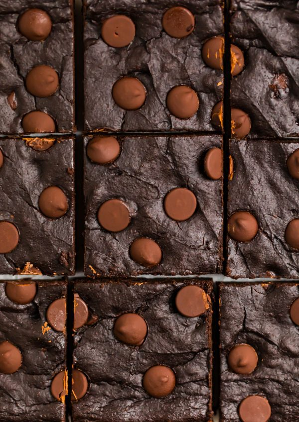 Avocado Brownies. Fudgy and moist with double the chocolate!