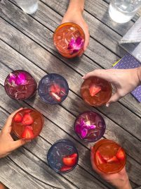 A group of colorful summer cocktails