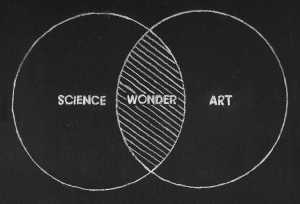 science wonder art