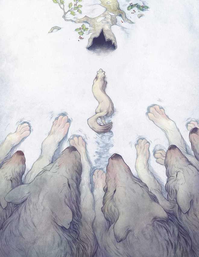 Illustrations by James Firnhaber
