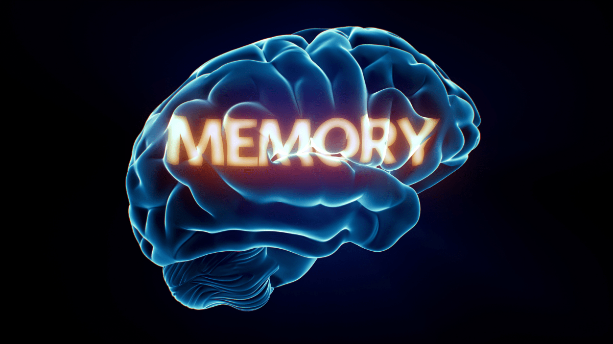Tips for boosting your memory and brain power