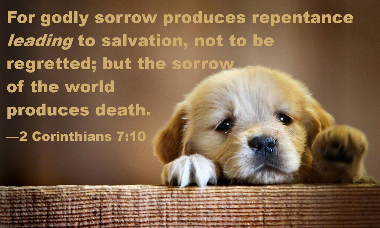 2 Corinthians 7 10