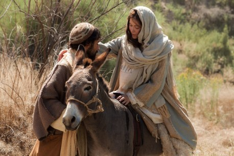 mary on the donkey