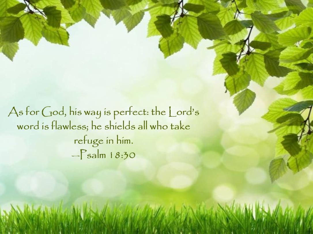 psalm 18 30