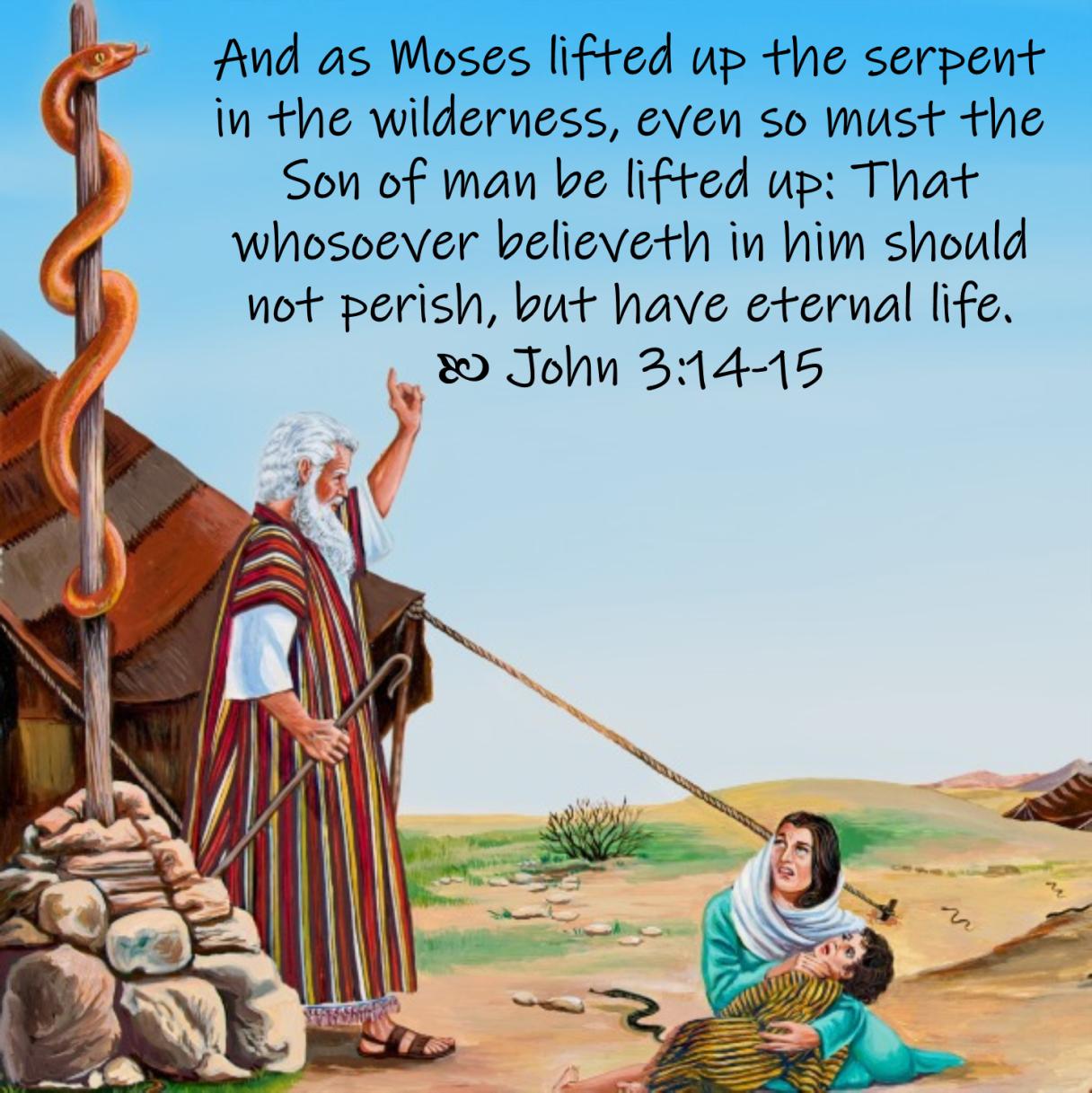 May 10 John 3 14-15