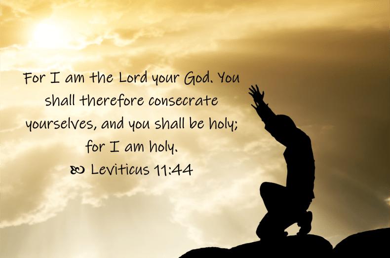 Feb 10 Leviticus 11 44