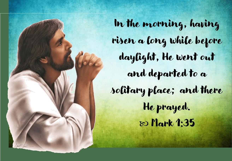 Feb 17 Mark 1 35