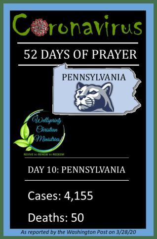 Penn cases