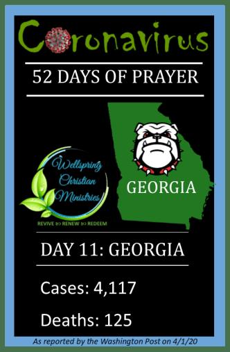 Georgia cases