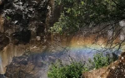 Sharing Circle: Rainbows