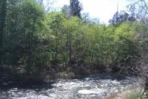 Big Chico Creek at Upper Bidwell Park